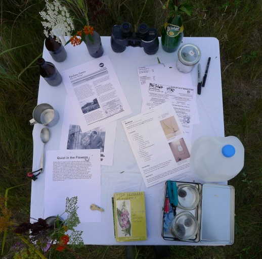 Supplies and information table