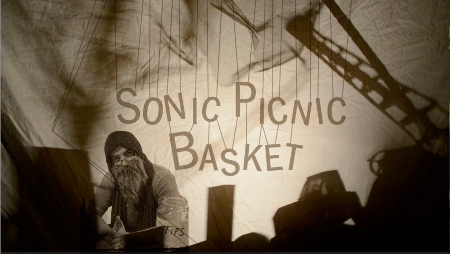 sonic picnic basket